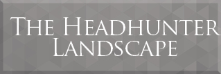 The Headhunter Landscape - How to find a NED role through a recruiter